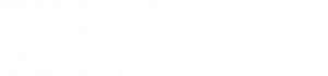The Christopher Bowers Agency Logo